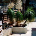 2 Bedroom Stone-built House for sale in Germasogeia, Limassol
