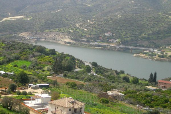 Land for Sale in Foinikaria, Limassol district