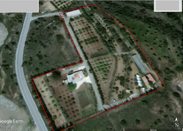 Bio Agricultural Farm with House for Sale in Parekklisia, Limassol