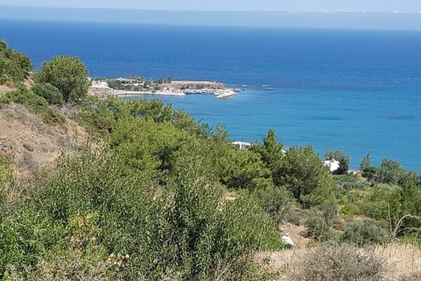 Residential Land in Pomos, Paphos District